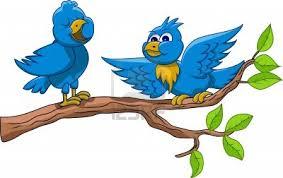 vroege vogeltjes