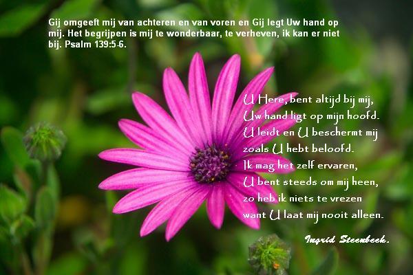 www.ingridsteenbeek.nl/wp-content/uploads/2015/01/Psalm-139..jpg